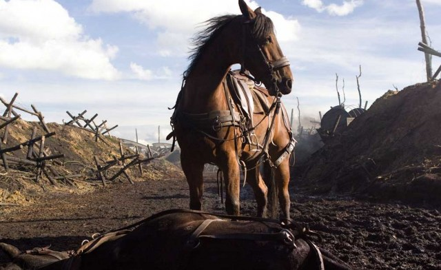 photo cheval guerre