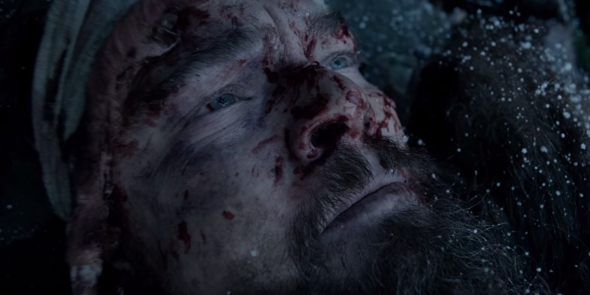 the_revenant_inarritu_dicaprio_2