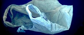 Humeur #3 : Plastic is not fantastic