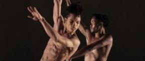[Danse – Critique] Swan Lake de Dada Masilo : Euphorie et larmes