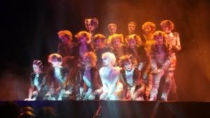 [Comédie Musicale – Info] Cats : Prisca Demarez en tête d'affiche à Paris